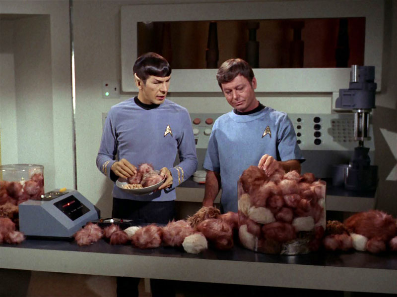 "Spock and Bones in ""The Trouble with Tribbles"""