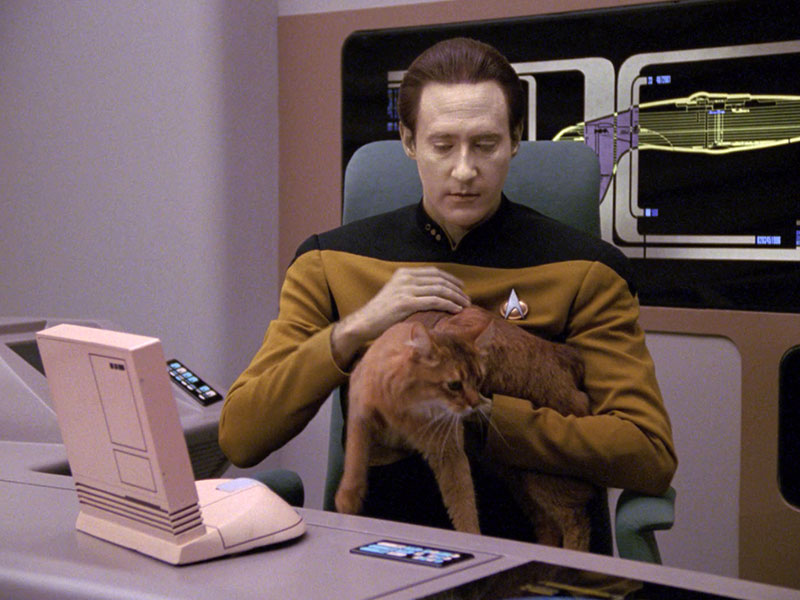 """Data holding Spot, from """"Data's Day"""""""