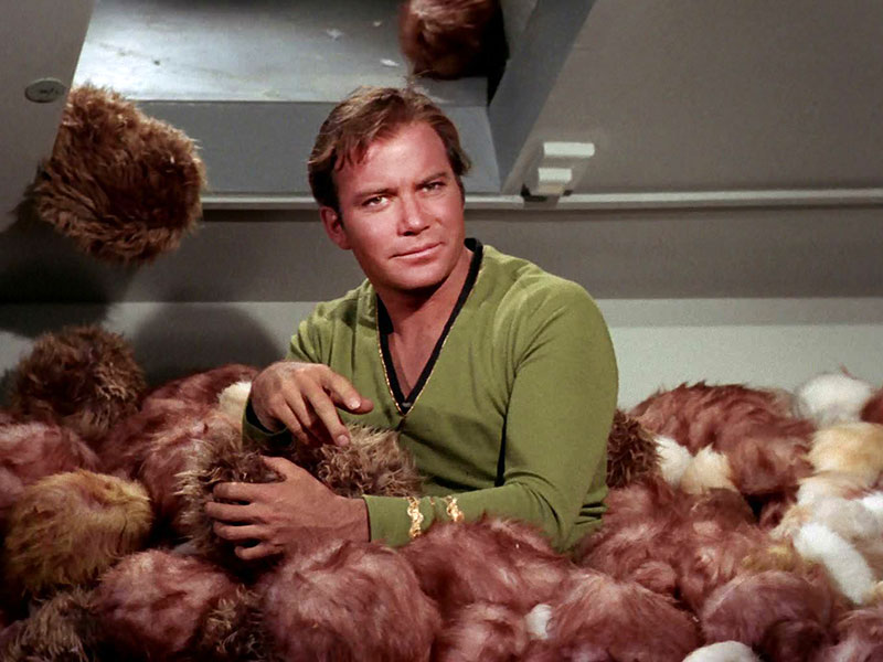 """From """"The Trouble With Tribbles"""""""