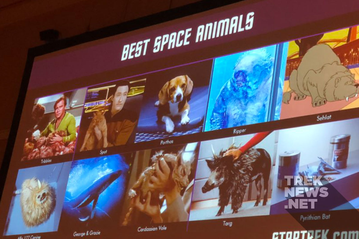 "Top 10 ""space animals"" of Star Trek"